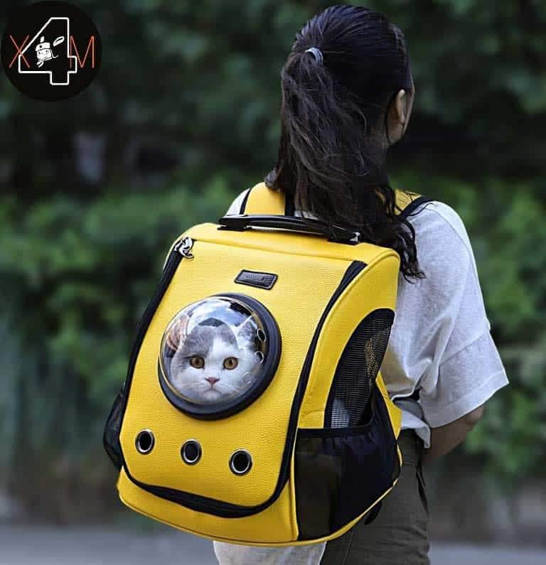 Photo of Xiaomi vende mochilas para pasear gatos